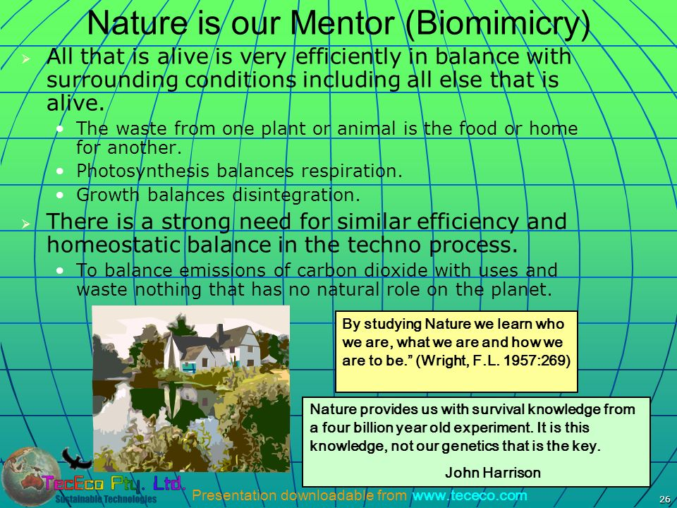 Nature is our Mentor (Biomimicry)