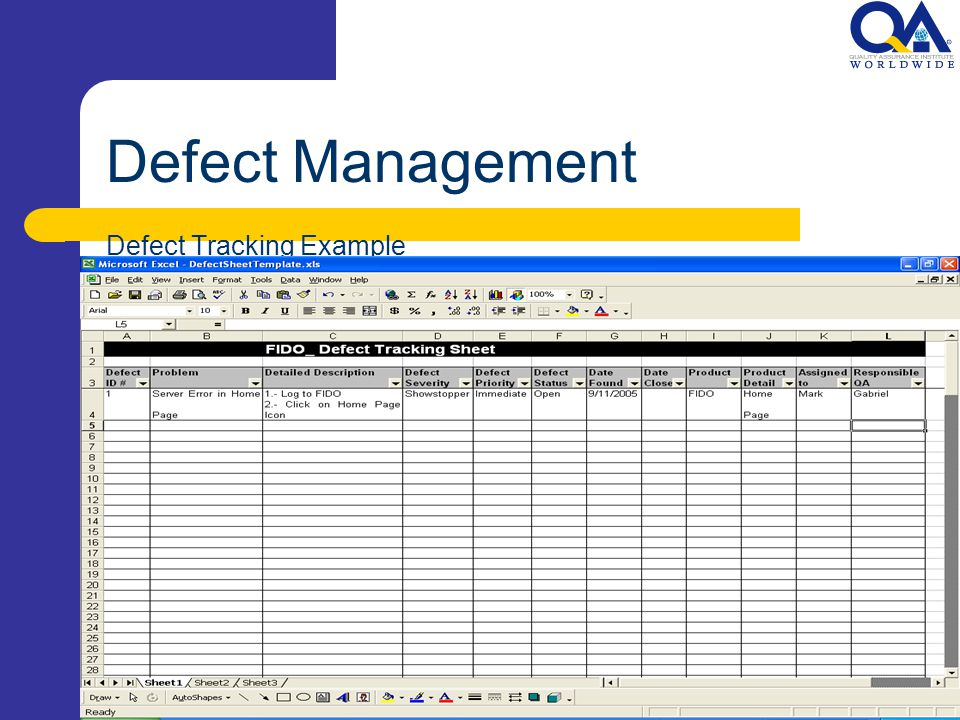 12 Defect Management Tracking Example