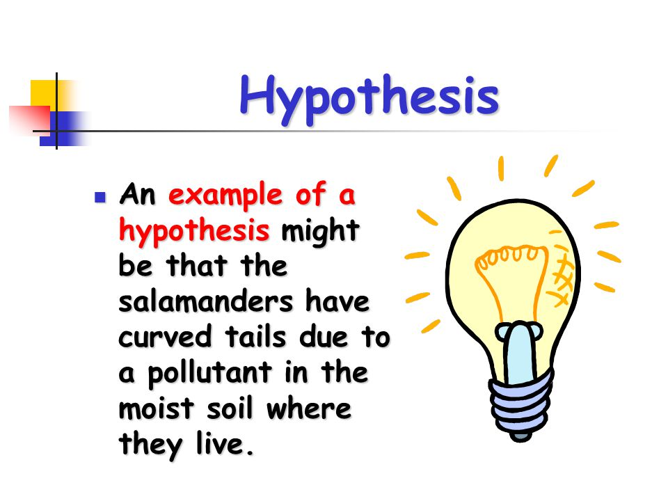 Hypothesis An example of a hypothesis might be that the salamanders have curved tails due to a pollutant in the moist soil where they live.