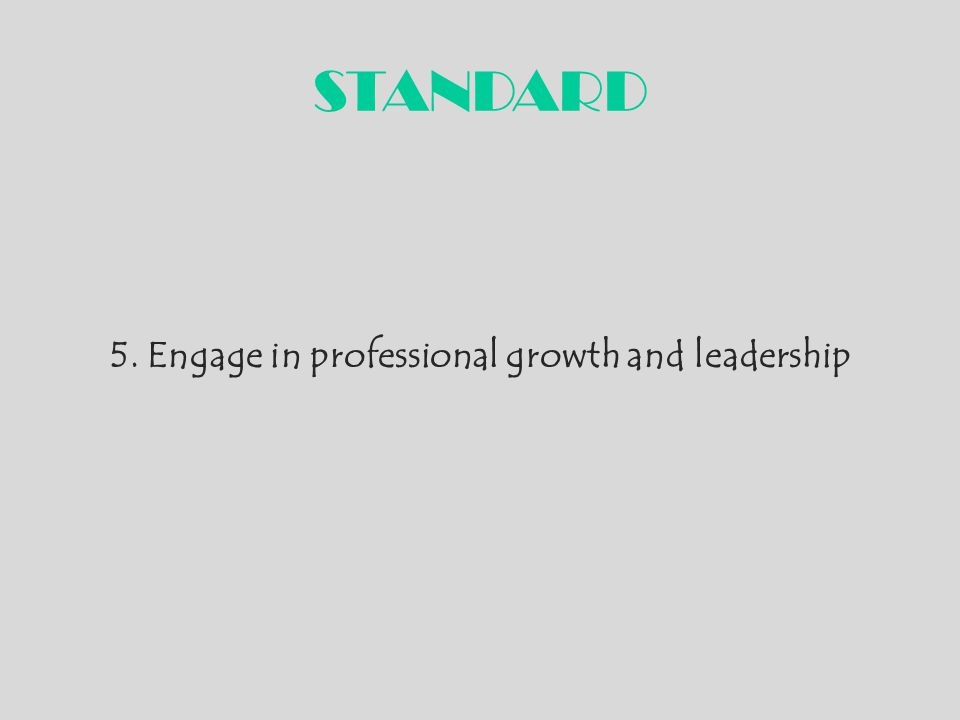 5. Engage in professional growth and leadership