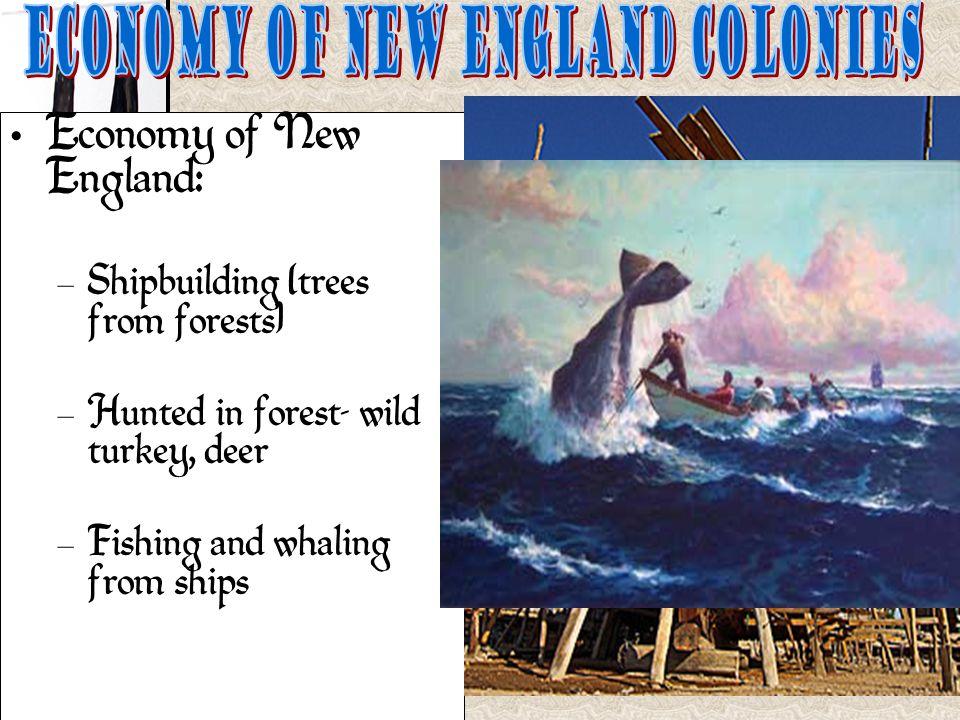 new england colonies economy