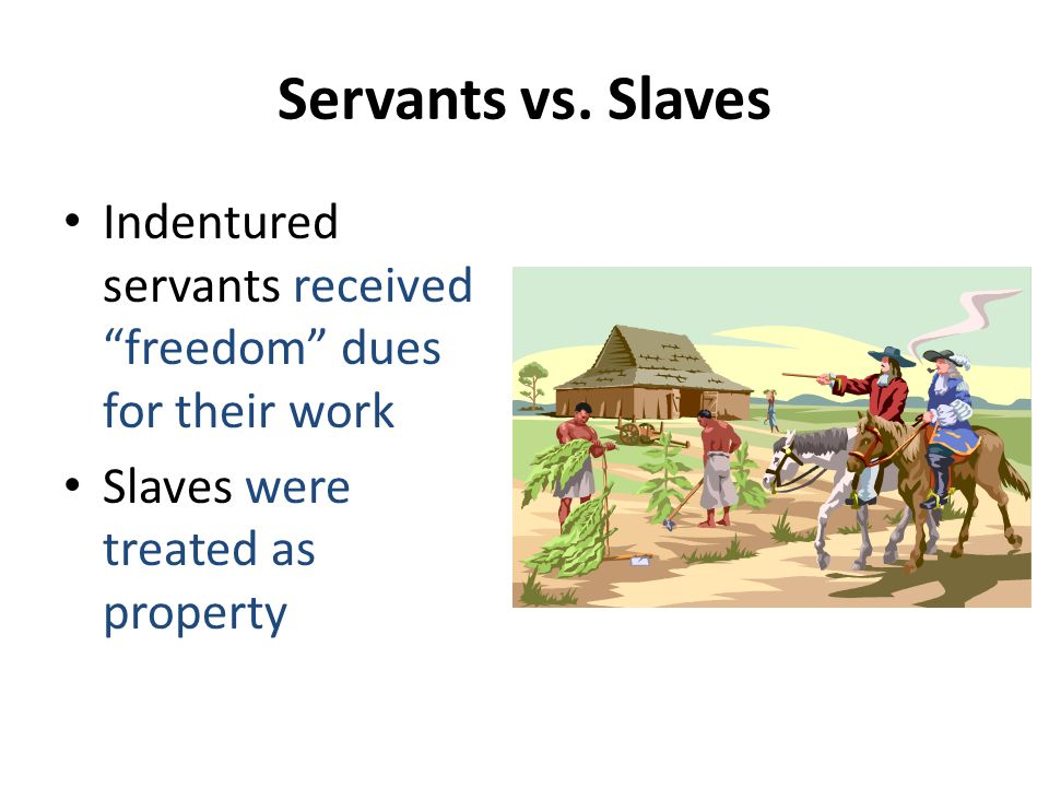 Servants vs. Slaves Indentured servants received freedom dues for their work.