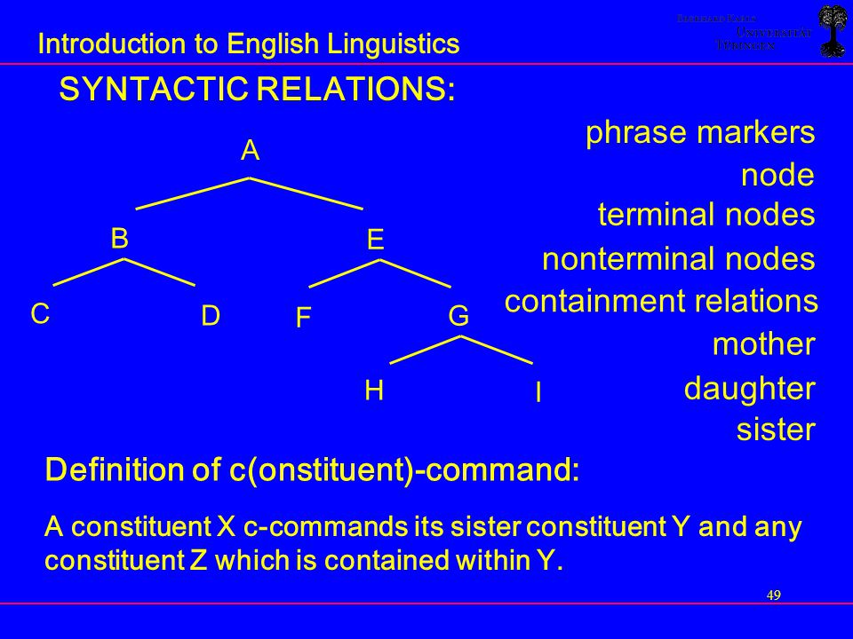 Introduction To English Linguistics Ppt Download