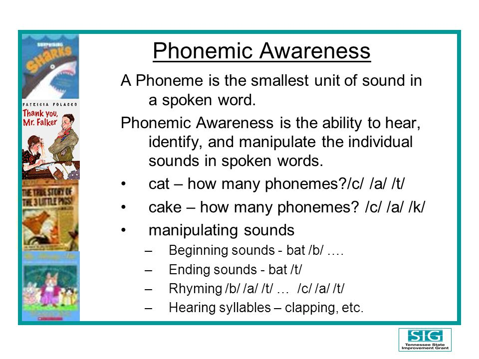 Phonemic Awareness A Phoneme is the smallest unit of sound in a spoken word.