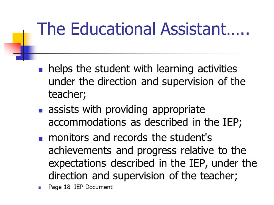 The Educational Assistant…..