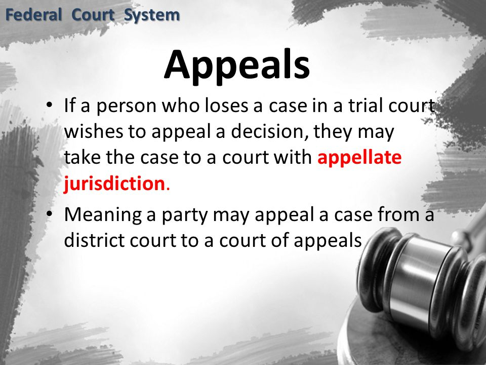 Federal Court System Appeals.