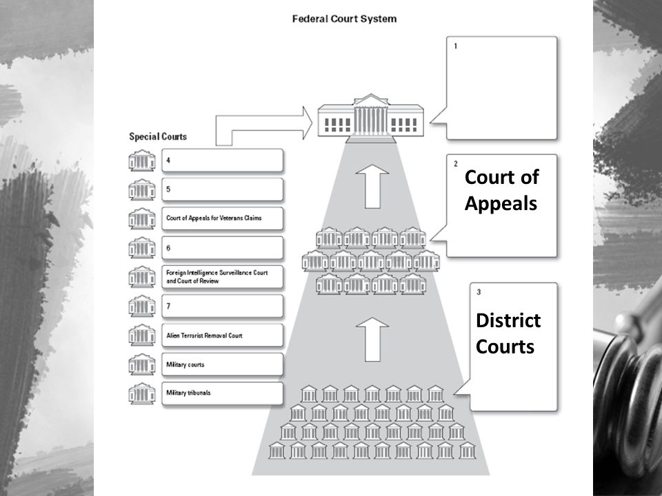Court of Appeals District Courts