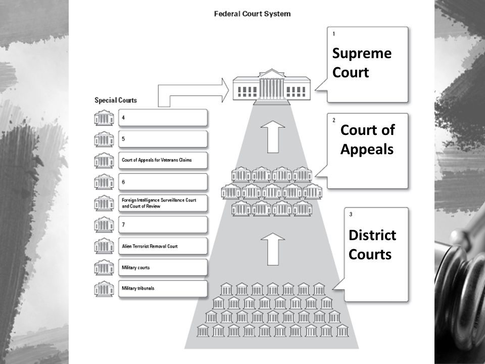 Supreme Court Court of Appeals District Courts