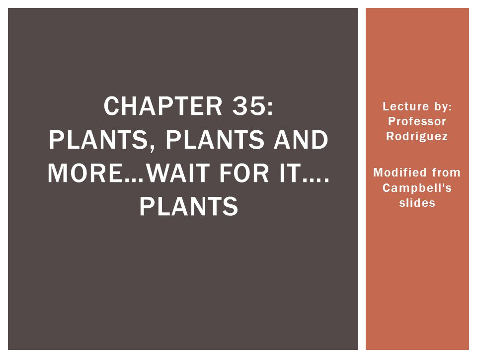 Chapter 35: Plants, Plants and more…Wait for it…. Plants