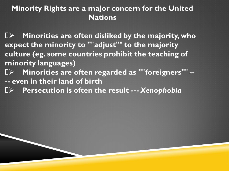 Minority Rights are a major concern for the United Nations