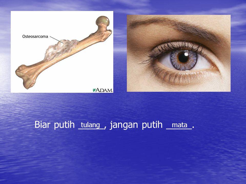 Maksud Peribahasa Biar Putih Tulang Jangan Putih Mata Berbagai Mata