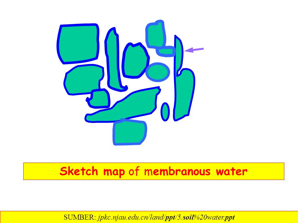 Sketch map of membranous water