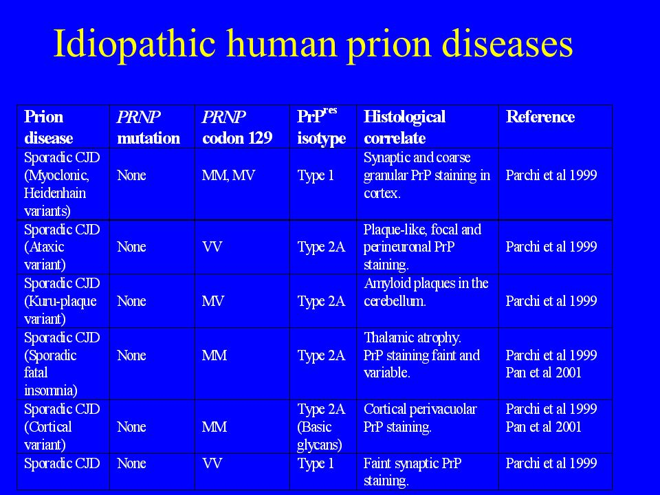 Idiopathic human prion diseases