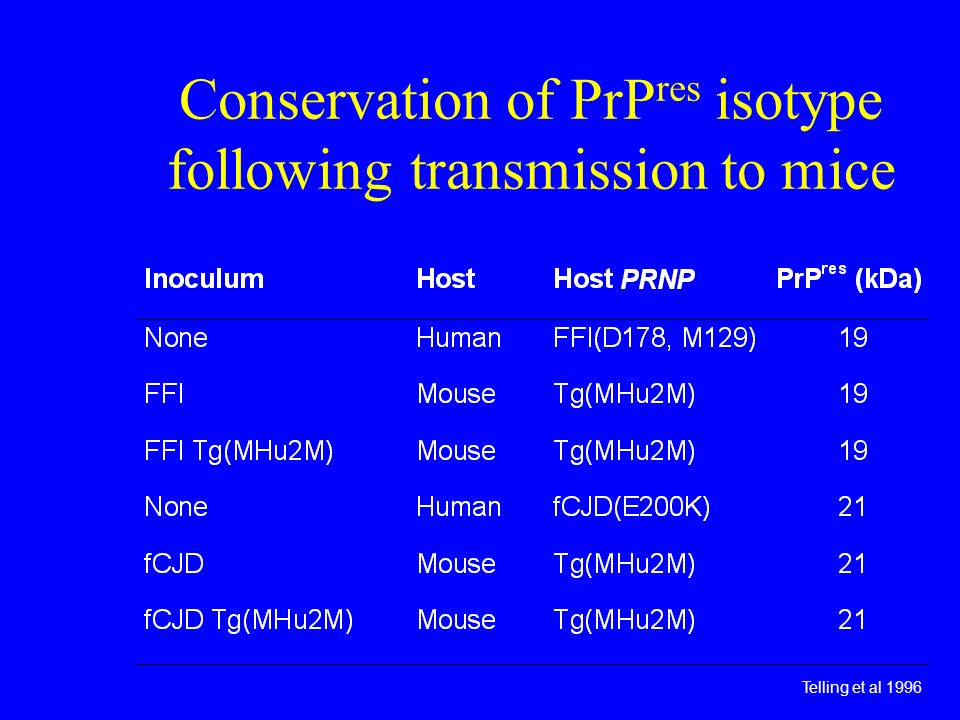 Conservation of PrPres isotype following transmission to mice