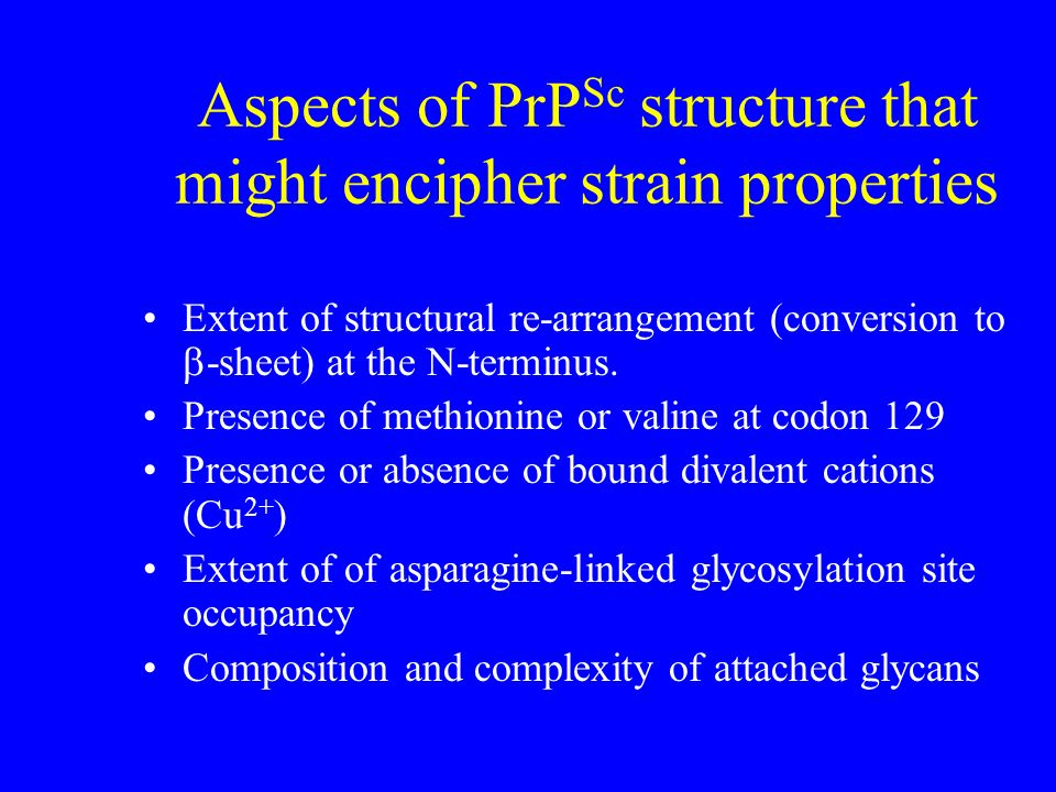 Aspects of PrPSc structure that might encipher strain properties
