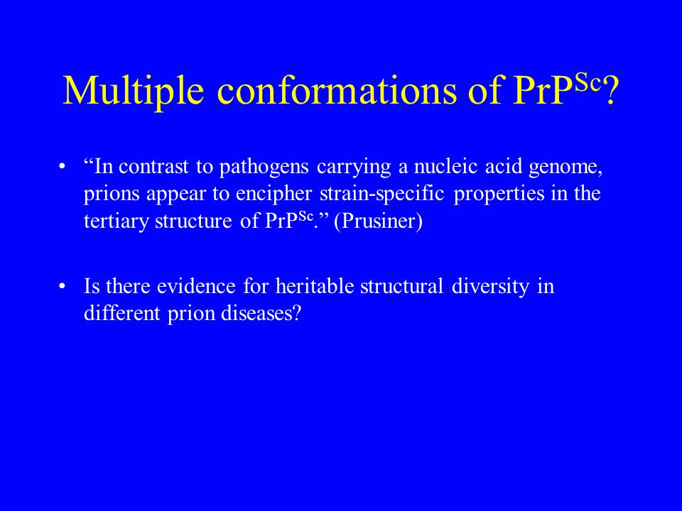 Multiple conformations of PrPSc
