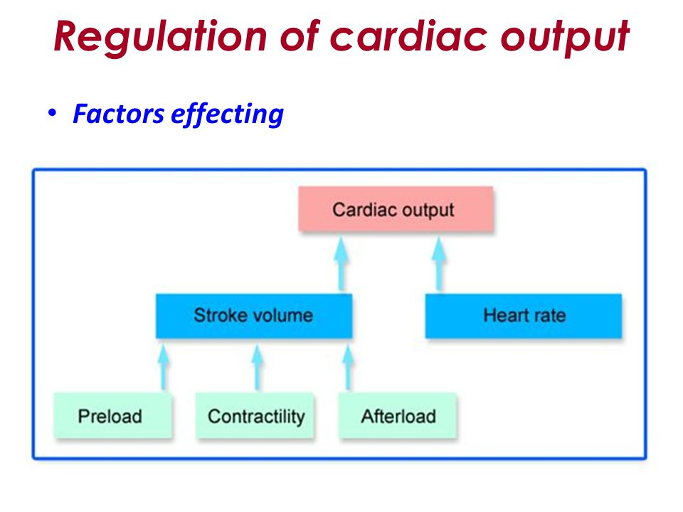 Relationships between cardiac output and venous return |authorstream.