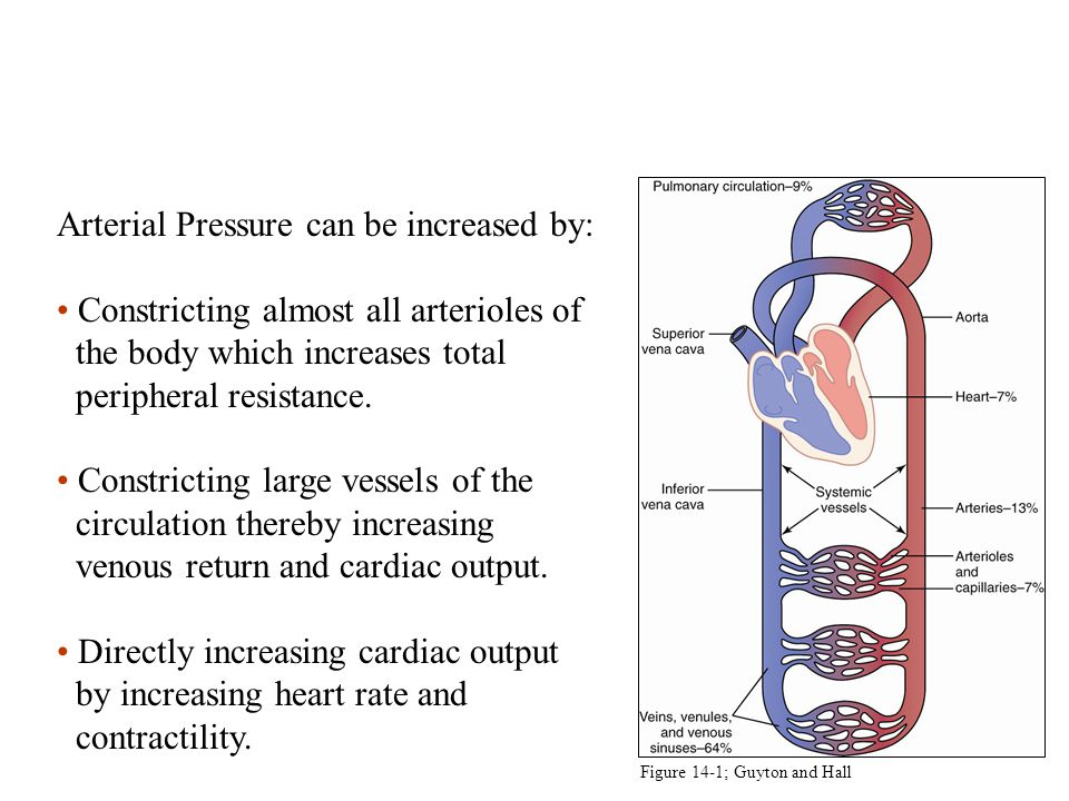 Arterial Pressure = Cardiac Output x Total Peripheral Resistance