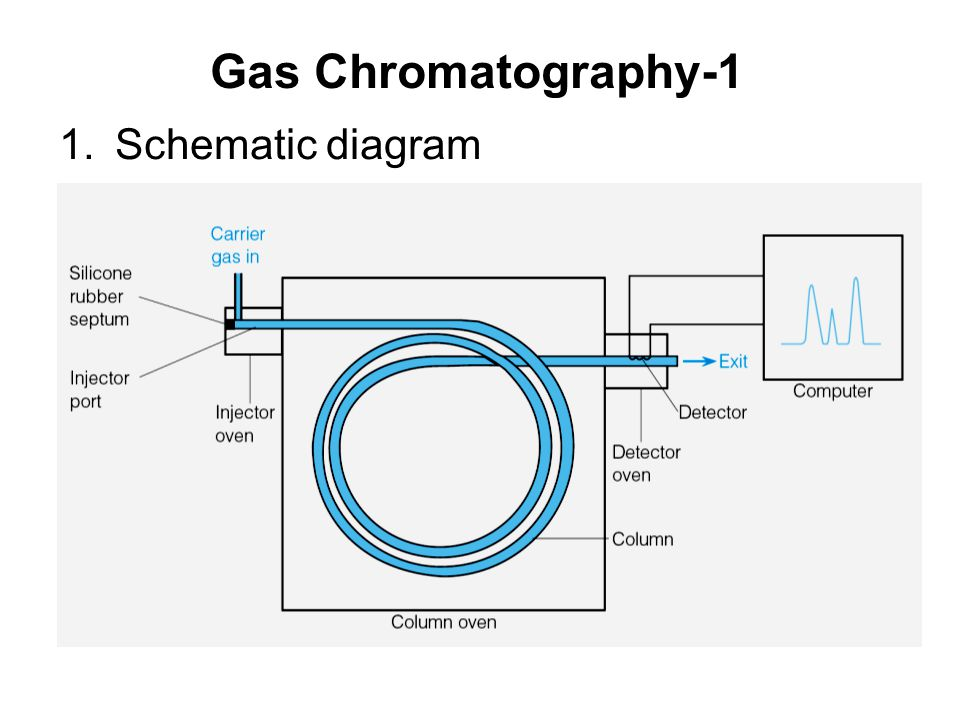 Images of Gas Chromatography Ppt - #rock-cafe