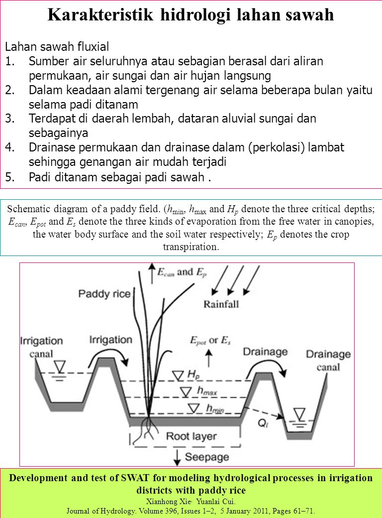 Kajian lingkungan dan pembangunan ppt download 16 karakteristik hidrologi lahan sawah ccuart Gallery