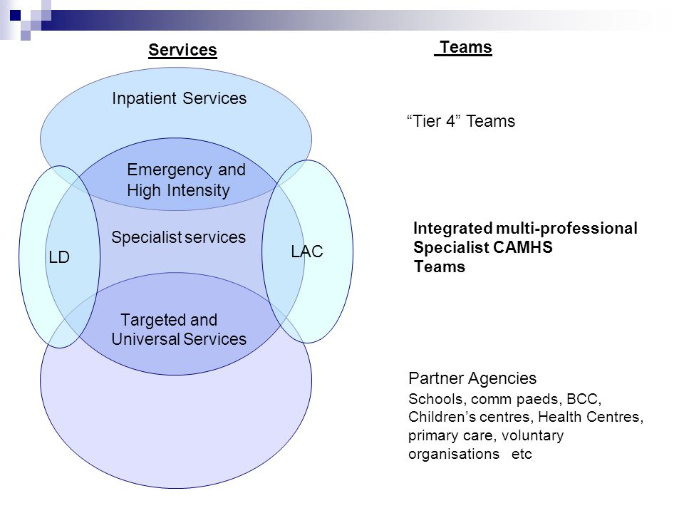 Services Inpatient Services Tier 4 Teams Emergency and