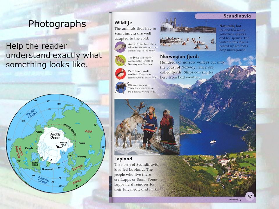 Photographs Help the reader understand exactly what something looks like.
