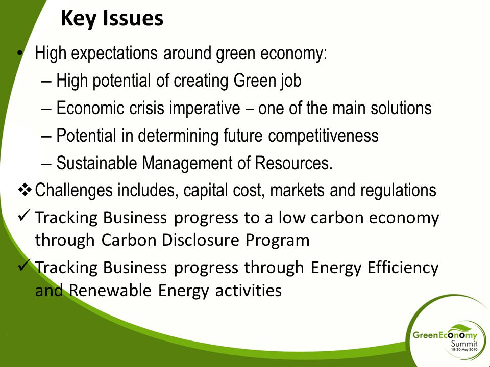 Key Issues High expectations around green economy: