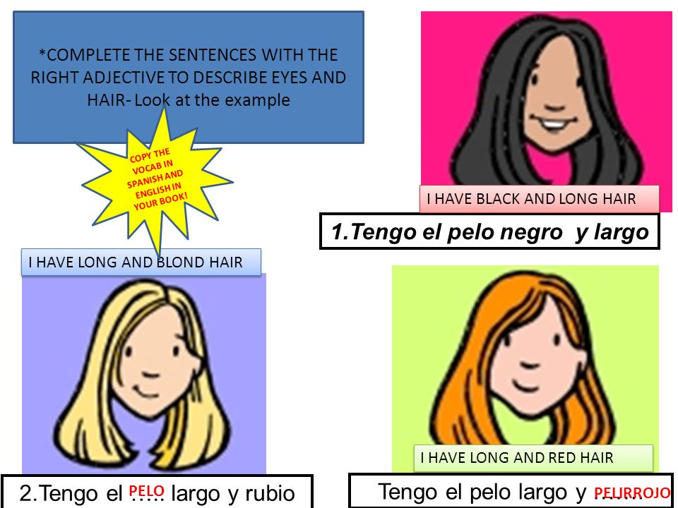Pelo largo in english