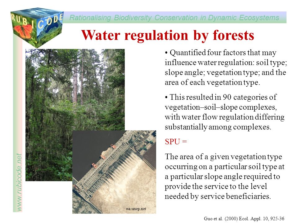 Water regulation by forests