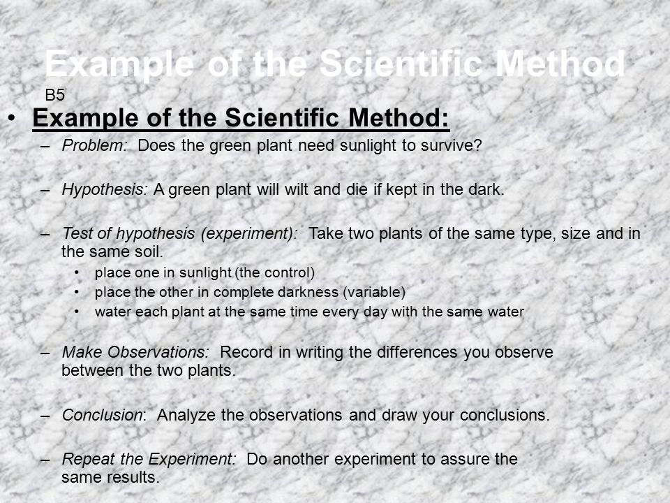 The Scientific Method Is An Organized Way To Solve A Problem Ppt