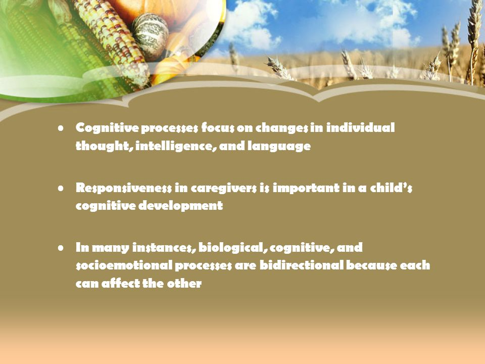 Cognitive processes focus on changes in individual thought, intelligence, and language