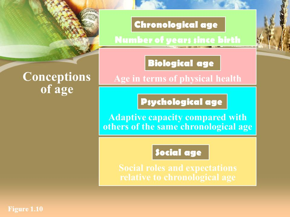 Conceptions of age Chronological age Number of years since birth