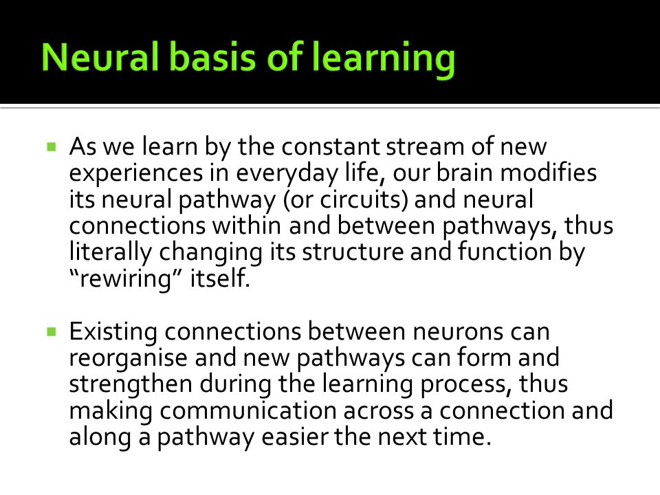 How we learn synapses and neural pathways memory