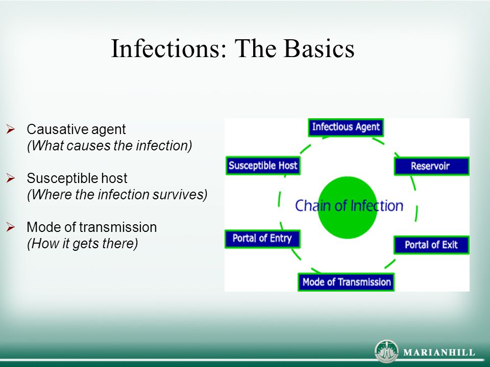 Infections: The Basics