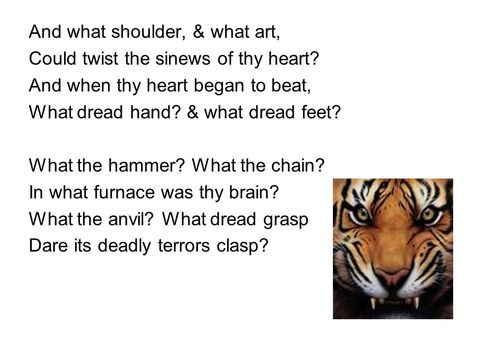 what does the tiger symbolize in the tyger