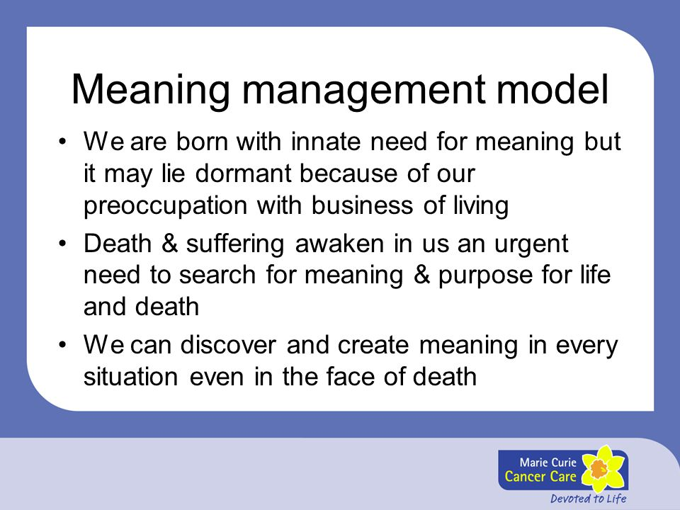 Meaning management model