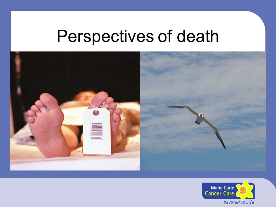 Perspectives of death There are so many diverse views of death