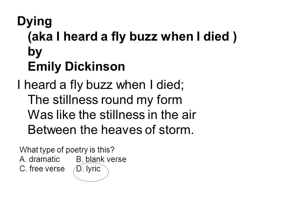 i heard a fly buzz emily dickinson analysis