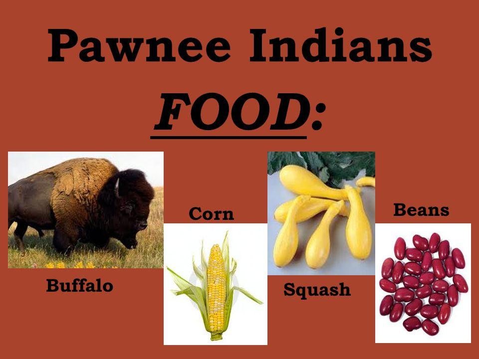 What Type Of Food Did The Cheyenne Eat