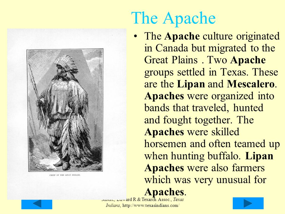American Indians In Texas Ppt Video Online Download