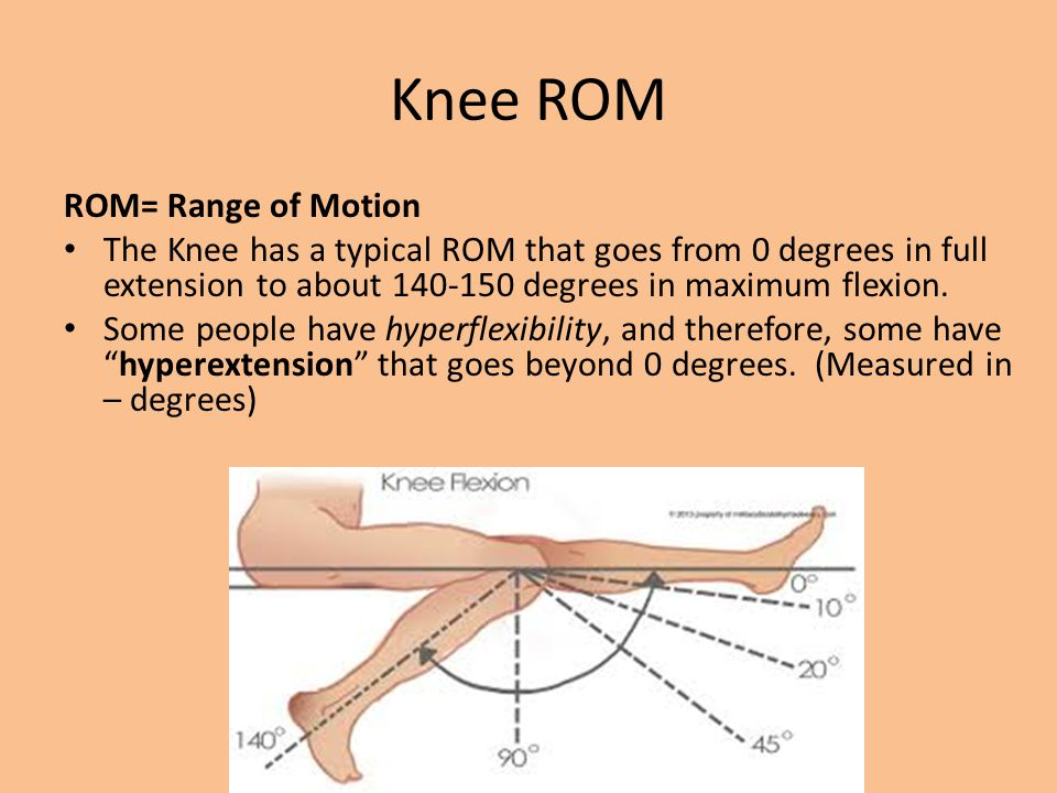 Knee Anatomy Bones, Ligaments and Cartilage - ppt video online download