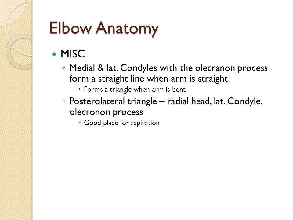 Elbow Anatomy Ppt Video Online Download