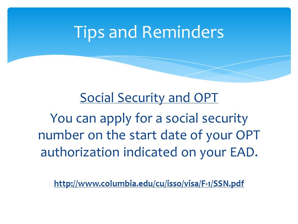 Social Security and OPT