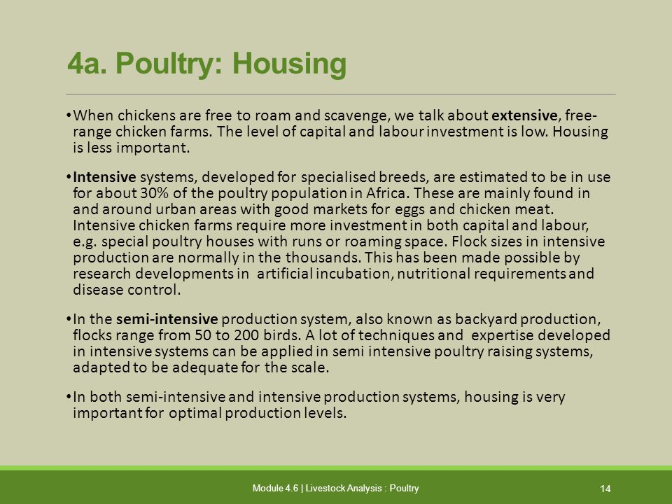 The Basics of Financing Agriculture - ppt video online download