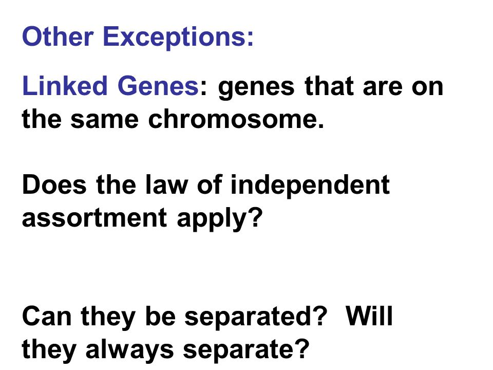 Other Exceptions: Linked Genes: genes that are on the same chromosome. Does the law of independent assortment apply