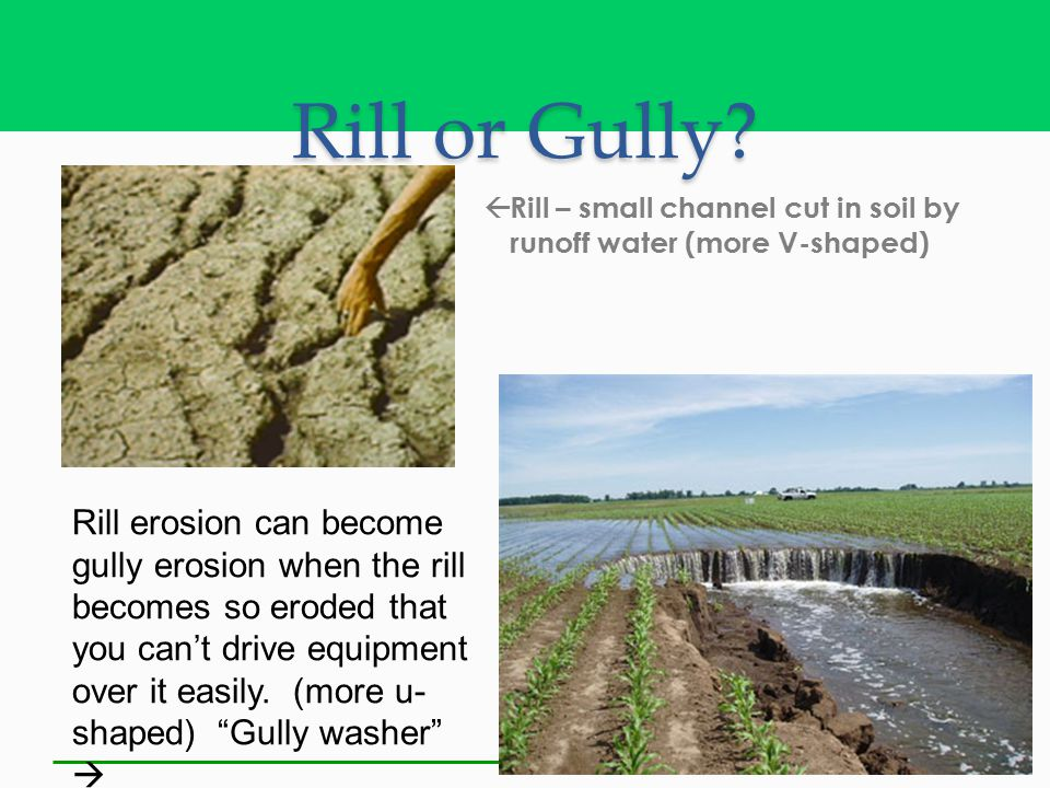 Rill or Gully Rill – small channel cut in soil by runoff water (more V-shaped)