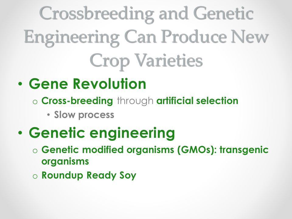 Crossbreeding and Genetic Engineering Can Produce New Crop Varieties
