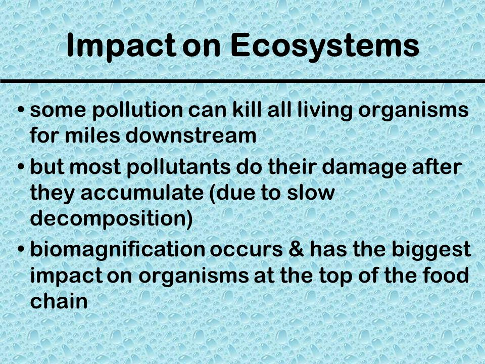 Impact on Ecosystems some pollution can kill all living organisms for miles downstream.