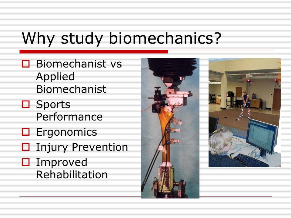 Introduction to Kinesiology & Biomechanics - ppt video online download