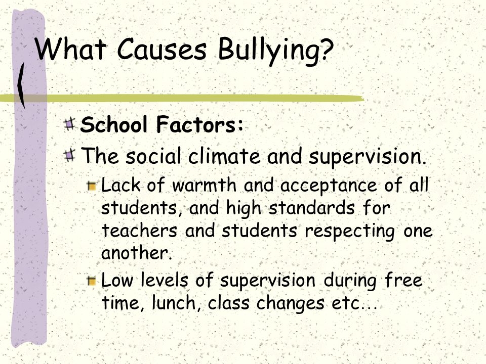 What Causes Bullying School Factors: